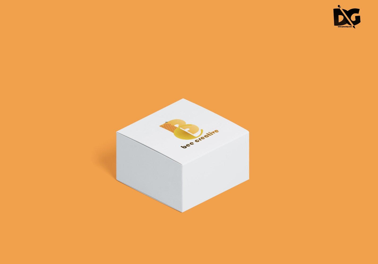 Box Folder Mockup