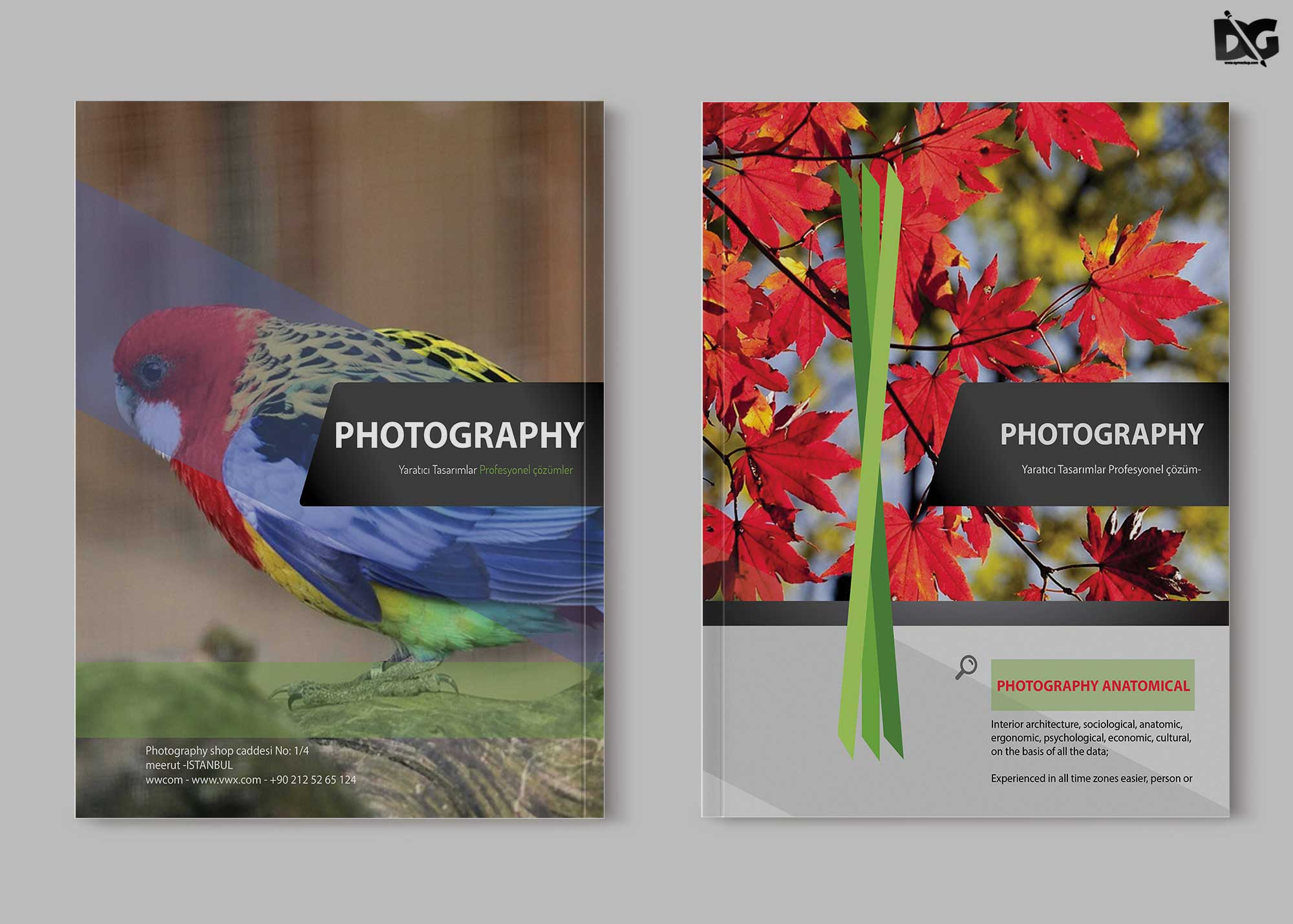Free Zoo Photography PSD Brochure Template